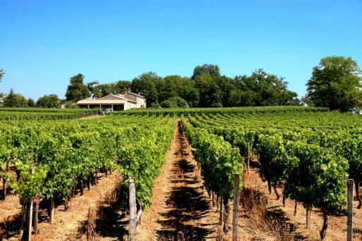 Comité des vignerons de Vinsobres
